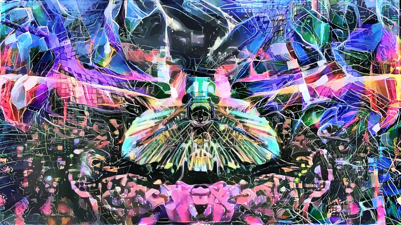 h_is_the_shit_-_frequency_moth